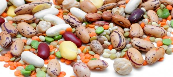 Daily serving of legumes significantly lowers bad cholesterol