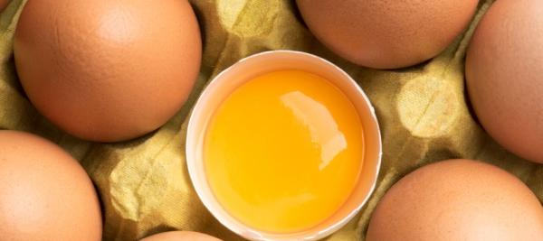 U.S. may drop advice to limit dietary cholesterol by end of year
