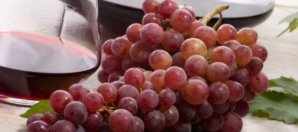 Antioxidant in red wine not tied to better health