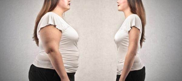 Body weight heavily influenced by gut bacteria