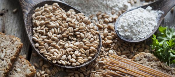 WHO: High fibre, whole grains protect from chronic disease