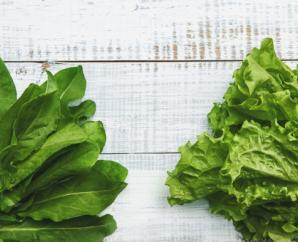 The best greens to build your summer salad