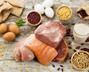 Can you eat too much protein?
