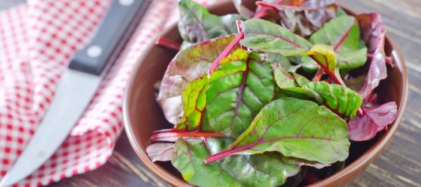 Spicy Sesame Swiss Chard