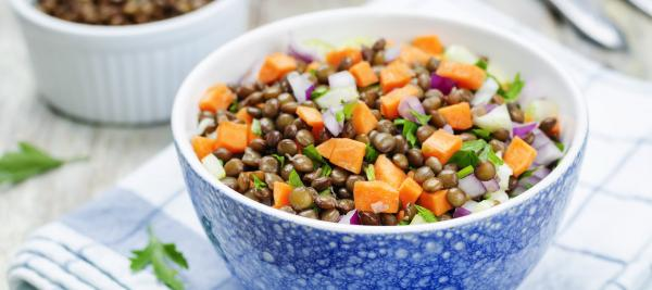 Lentil Salad with Citrus Yogurt Dressing